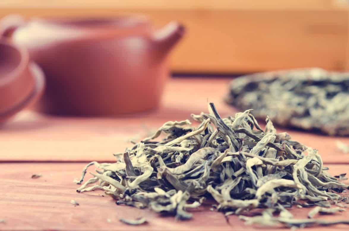 types-of-white-tea-e1558141439275-8715236