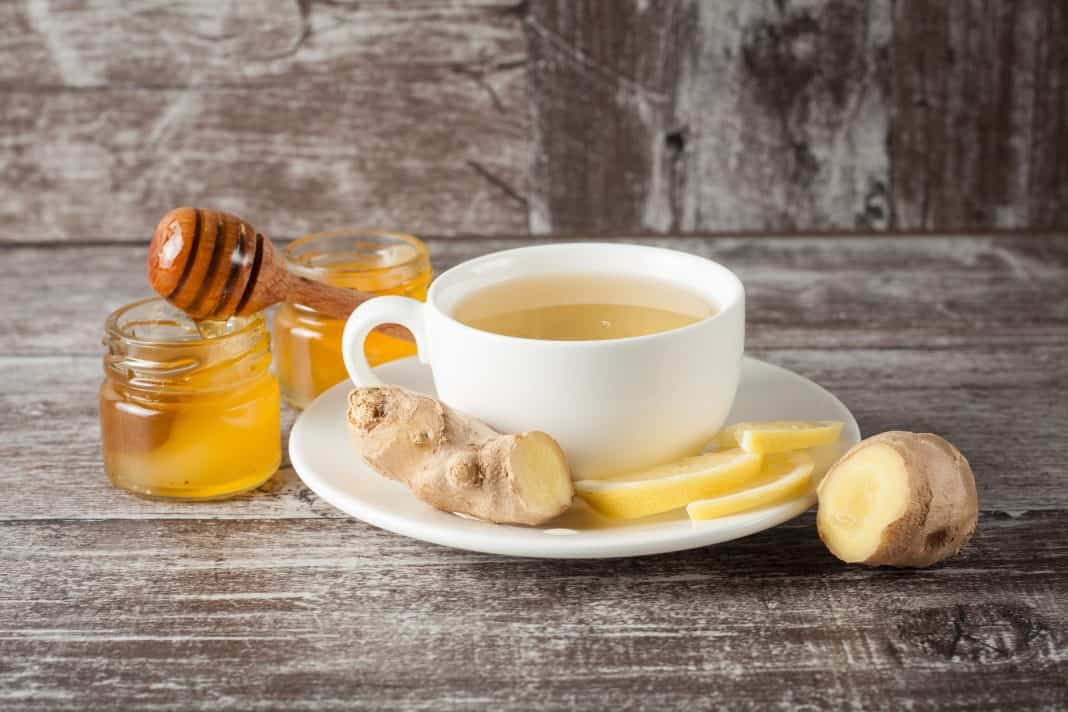 ginger-and-honey-tea-recipe-e1560586878187-2495425