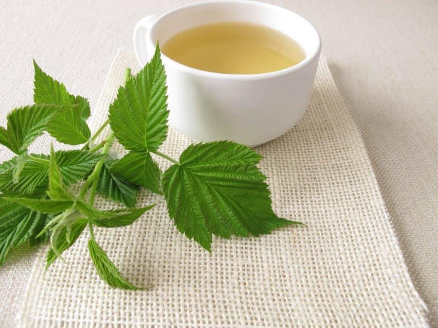 raspberry-leaf-tea-e1564293652271-6011830