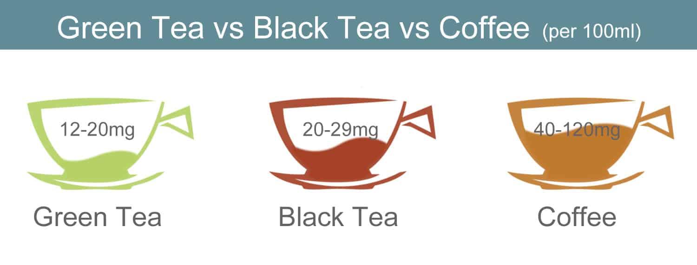 caffine-green-tea-vs-black-tea-vs-coffee-9812772