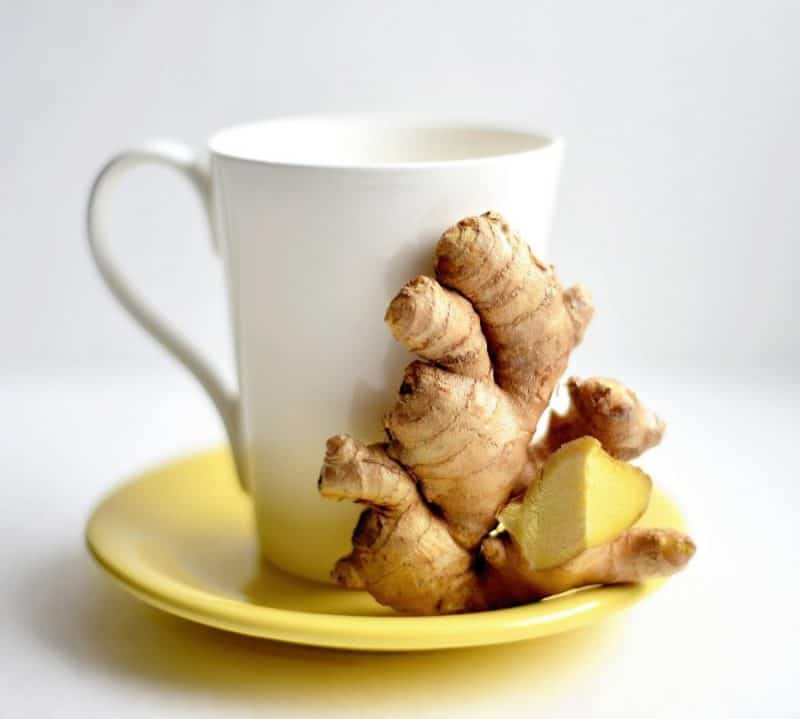 ginger-and-cup-e1564890875818-7752694