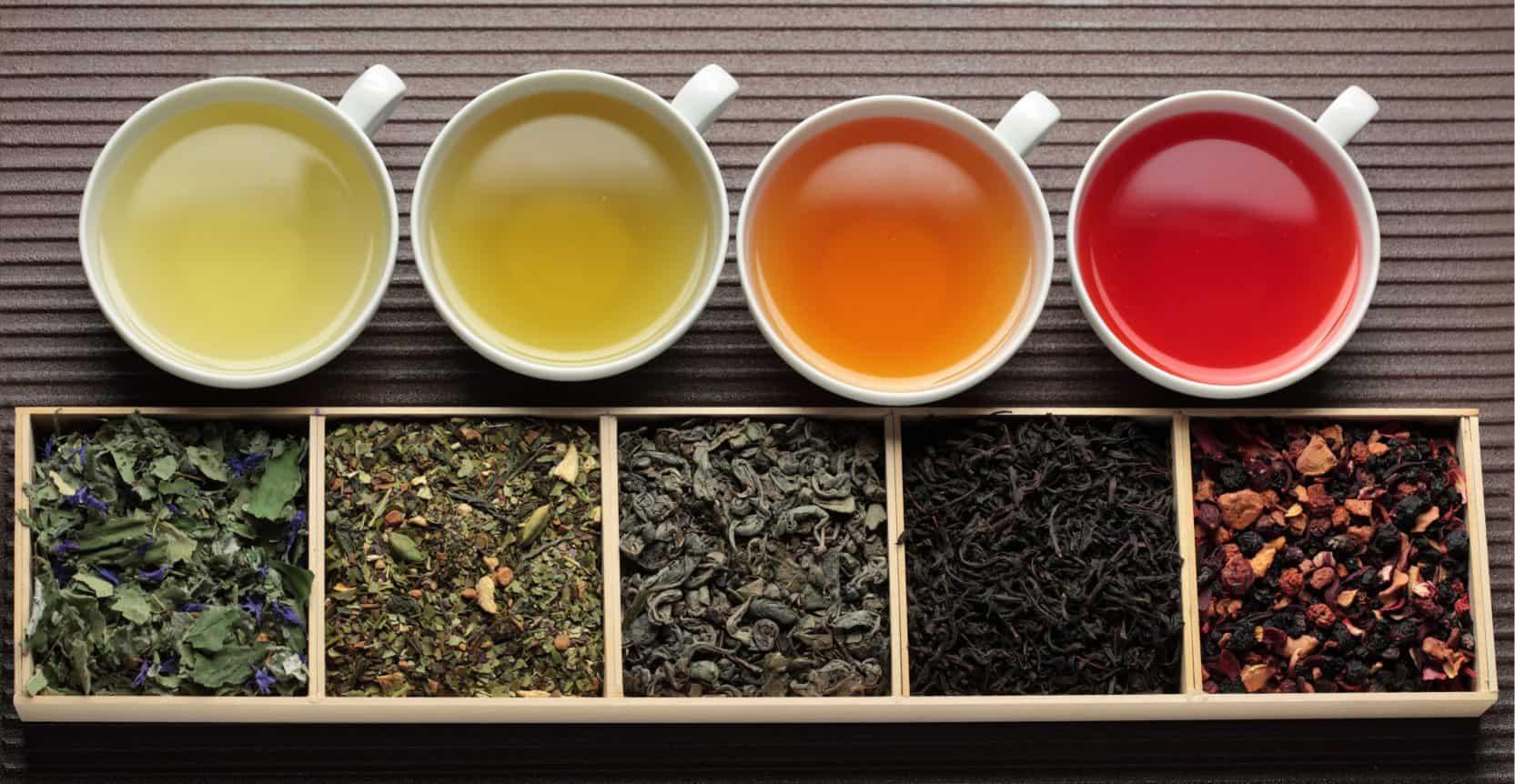 types-of-tea-e1555299753985-6240384