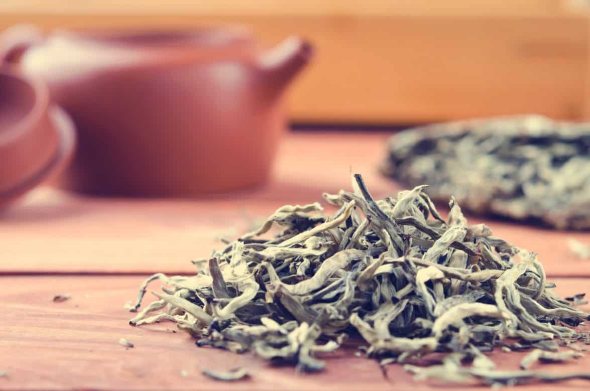types-of-white-tea-e1558141439275-5287788