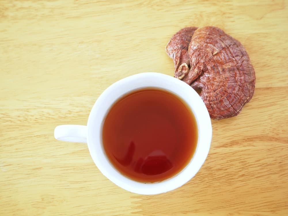 Making and Brewing Mushroom Teas