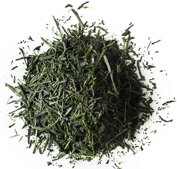 Nishi First Flush Sencha -Best Premium Green Tea for drinking