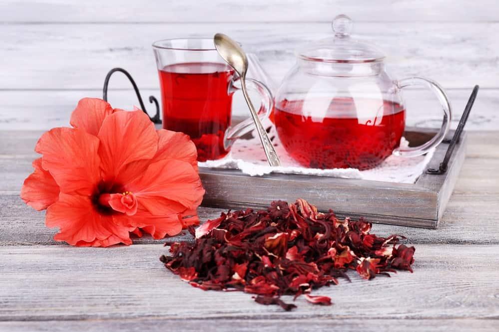 Hibiscus Tea Side Effects