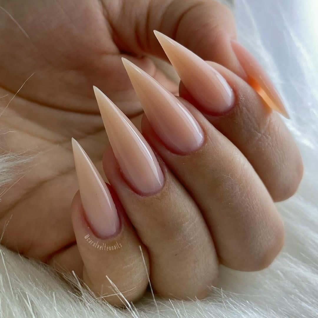 Feminine & Classy Nude Stiletto Nails